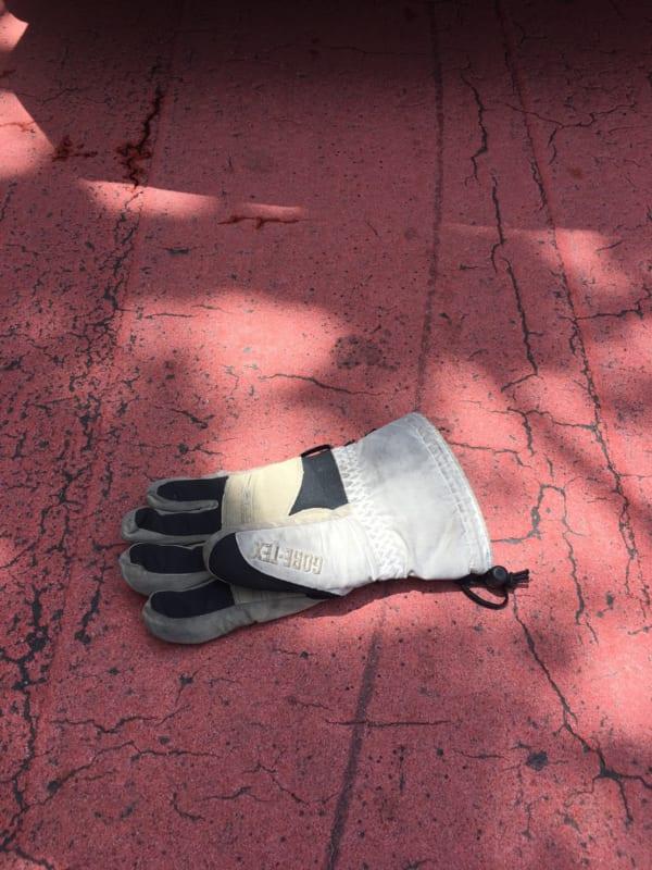 手袋その2。(写真/ダーシマ)