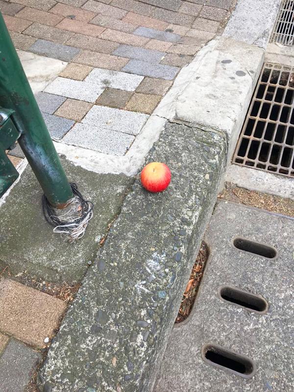 都内の路上にて発見。この落とし物から、まさかあのかわいいキャラクターが浮かんでくるとは!?(写真/ダーシマ)