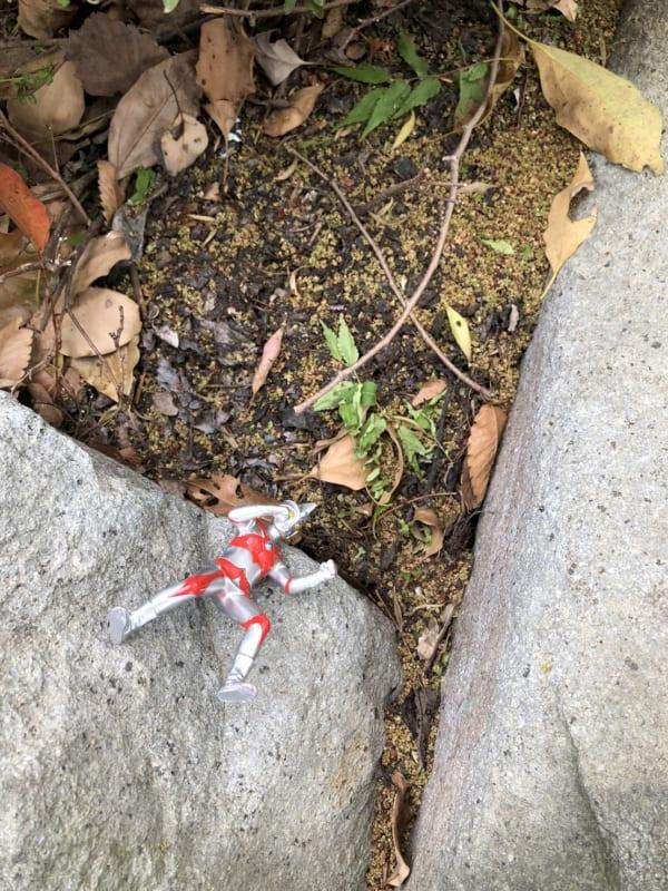 都内で発見した「宝探し」の宝物かもしれない落とし物、その1。(写真/ダーシマ)