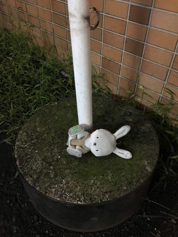 都内で発見したうさぎのぬいぐるみの落とし物。(写真/ダーシマ)