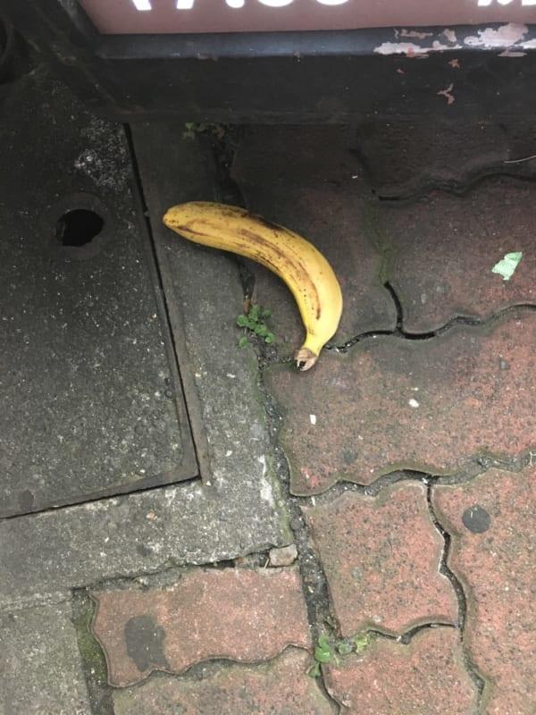 都内の路上にて発見したバナナ。遠足のおやつには入らないと先生に言われたのだろうか?(写真/ダーシマ)
