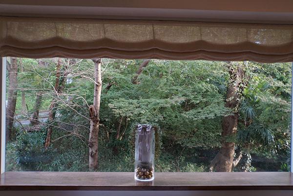 大きな窓からは、季節のうつり変わりが楽しめる