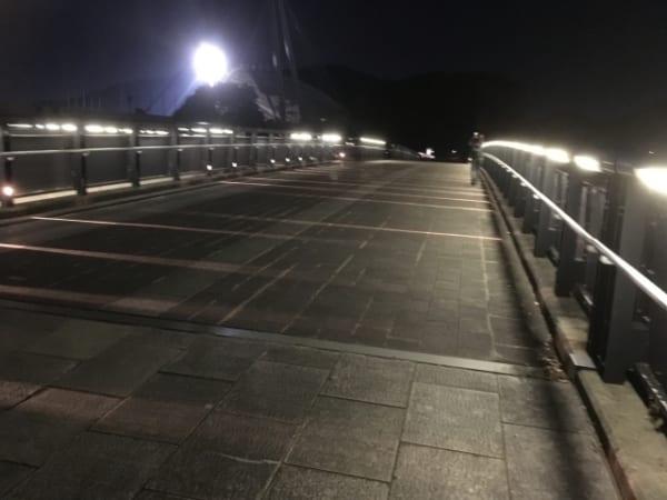大海にかかる橋ではなく、町中の橋の上でイルカという言葉を聞くなんて