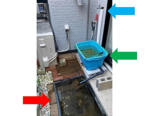 タライ式のカメ池(緑矢印)を、埋め込み式のカメ池(赤矢印)より高い位置に移動。水道栓(青矢印)から水を少しずつ出し、オーバーフローで2つの池に流れ込むように応急処置した。(撮影/大渕希郷)