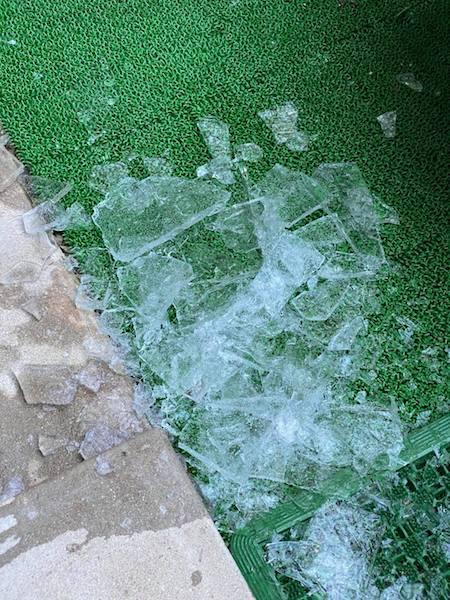 慌ててカメ池から氷を除去した際の様子。(撮影/大渕希郷)