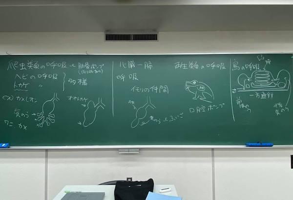 専門学校でも両生爬虫類の授業を担当している。こちらはちょうど「蛇の呼吸」などを教えた時の板書。(撮影/大渕希郷)