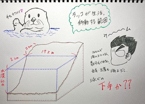 ラッコは一般的に水深60mより浅い海に棲む。しかしそれより深い海を100kmも移動した事例もある。(イラスト/大渕希郷)