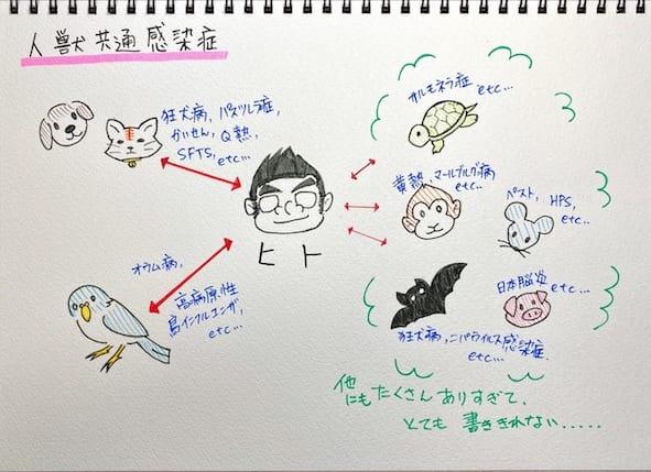 人獣共通感染症(ズーノーシス)は様々ある。動物由来感染症とも言う。(イラスト/大渕希郷)